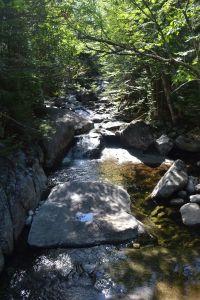 Adirondack Stream 2013